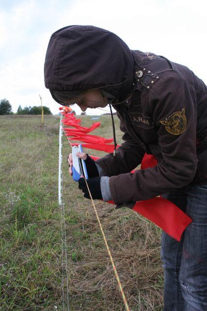 """""""Baltijos vilko"""" savanorė sega raudonas vėliavėles prie elektrinio piemens. Andrejaus Gaidamavičiaus nuotr."""